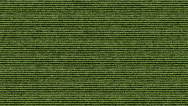 tretford-Teppich EVER, Bahnenware mit Juterücken Nr. 569 Moos